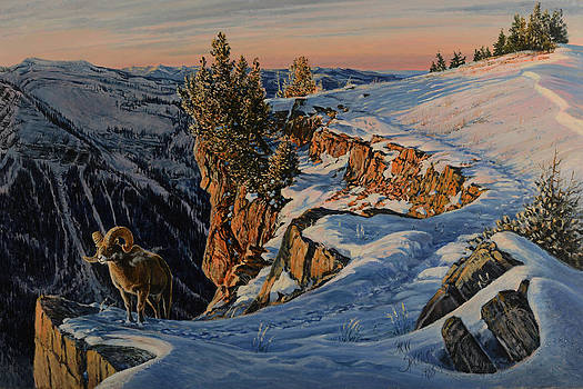 Eyes of the Canyon by Steve Spencer