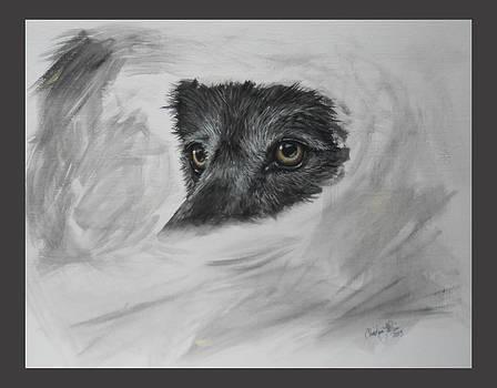 Eyes of Wisdom by Christine StPierre