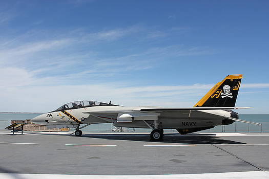 F-14 Tomcat by Rod Andress