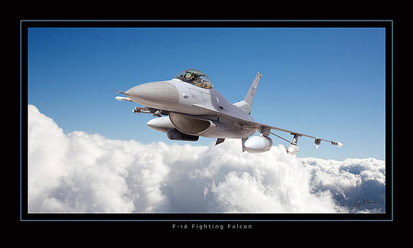 F16 Fighting Falcon by Larry McManus