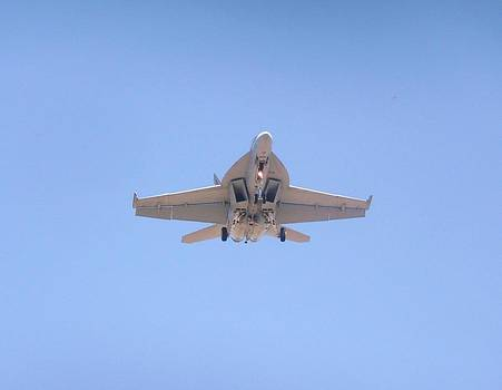 FA-18EF Super Hornet by Amy Ernst