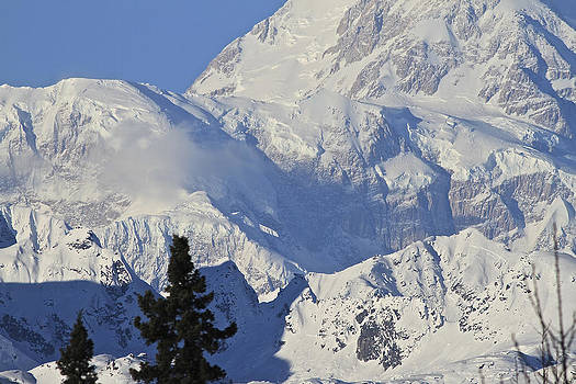 Face of Denali by Donna Quante