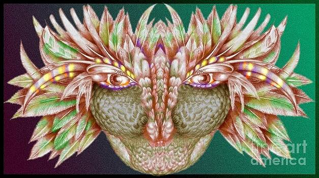 Face with Feathers by   Drew