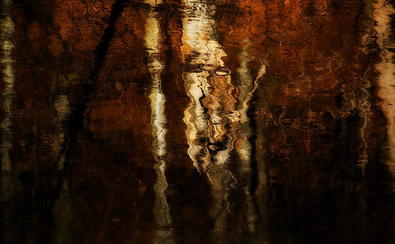 Faces and Reflections by Kim Zier