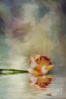 Faded Rose by Susan Gary