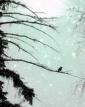 Gothicrow Images - Abstract Faded Winter