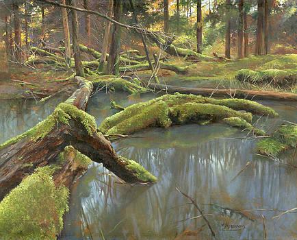 Failing trees by Victor Mordasov