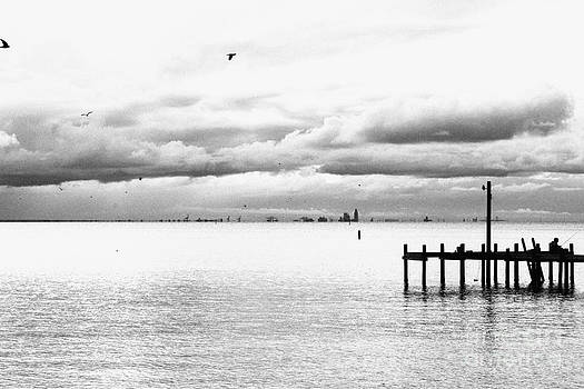 Fairhope pier greyscale by Russell Christie