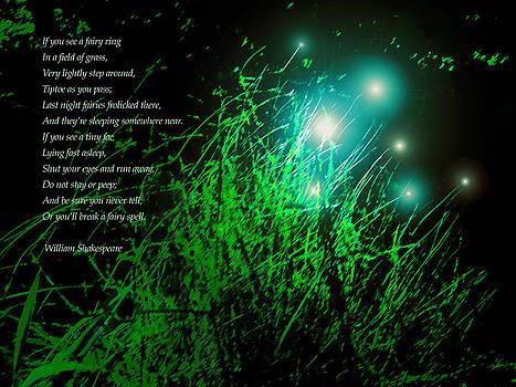 James Temple - Fairy Grass