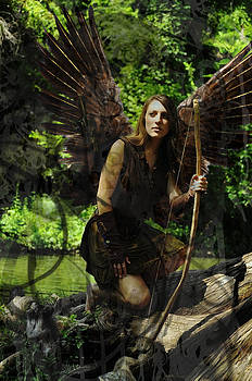 Fairy Huntress by Cherie Haines