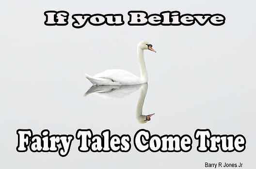 Fairy Tales by Barry R Jones Jr