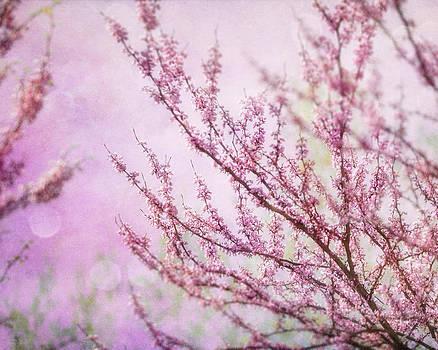 Lisa Russo - Fairytale Redbud in Pink
