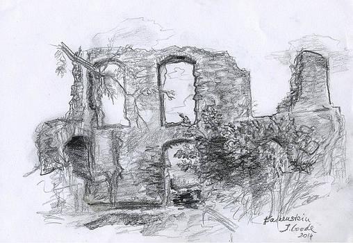 Falkenstein Ruine by Jana Goode