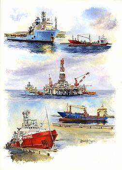 Falklands Montage I by David McEwen