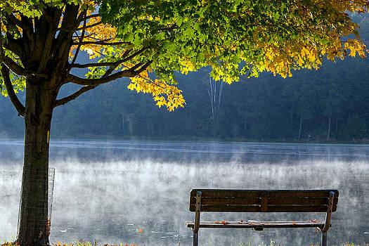 Fall 2014 by Frank Morales Jr