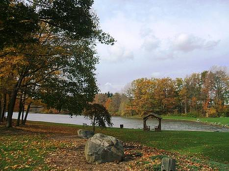 Fall at Green Lake by Suzanne Perry