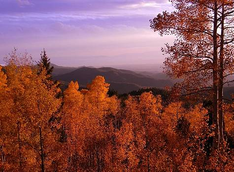 Fall At Santa Fe Ski Resort by Daria Yesieva-Kartsinski