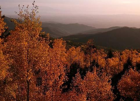 Fall At Santa Fe Ski Resort2 by Daria Yesieva-Kartsinski