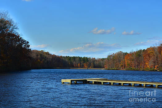 Fall at the Lake by Anne Marie Corbett