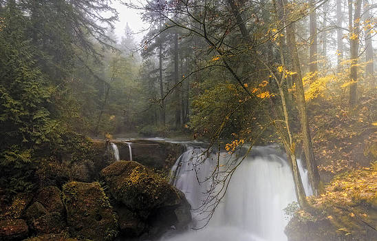Fall At Whatcom Falls by Ray Still