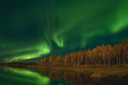 Fall Auroras by Ronald Lafleur