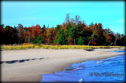 Fall Beach by Terri K Designs