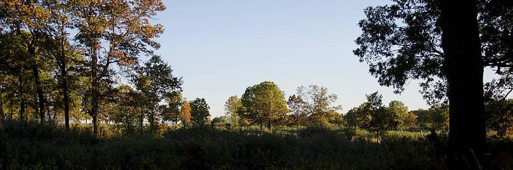 Fall Beginnings by James Blackwell JR