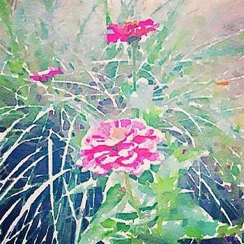 Cathy Hacker - Fall Blooms