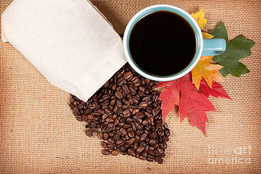 Fall Coffee  by Sharon Dominick