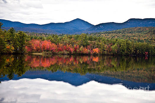 Fall Color - New Hampshire by Carol Barrington