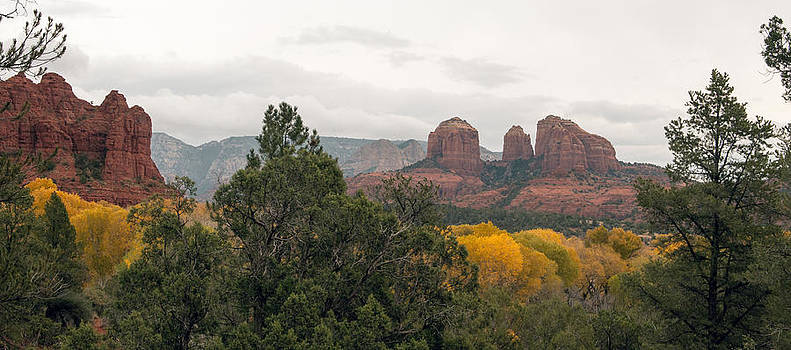 Tam Ryan - Fall Color Sedona 0495