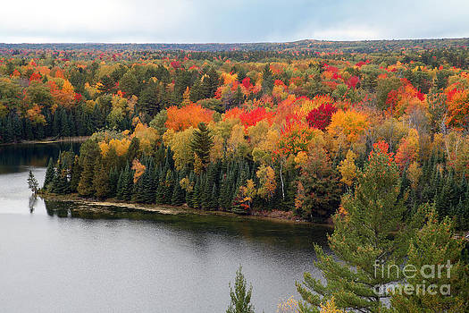 Jeff Holbrook - Fall Color on the Au Sable