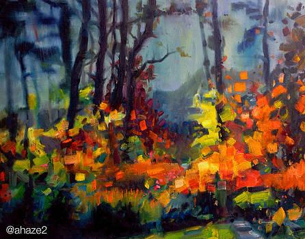 Fall Colors by Aaron Hazel