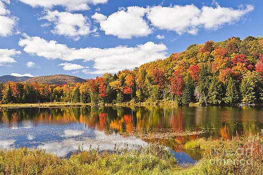 Fall Colors At Long Pond by Alan L Graham