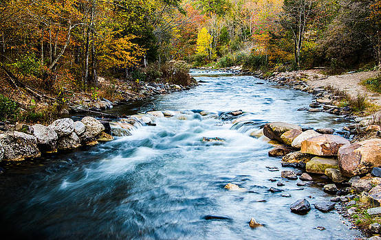 Alan Roberts - Fall Colors at the Stream