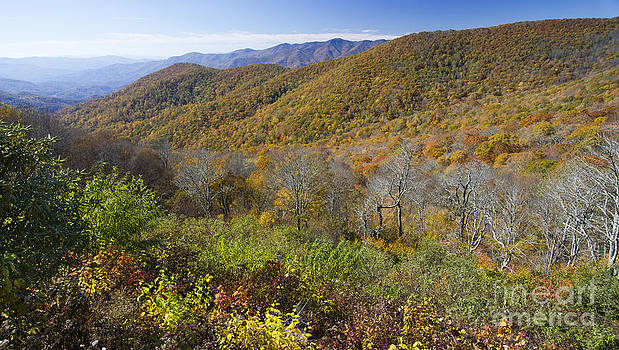 Fall Colors Blue Ridge Parkway NC by Dustin K Ryan