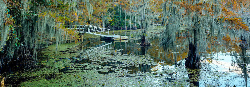 Fall Colors come to Caddo Lake by Geoff Mckay
