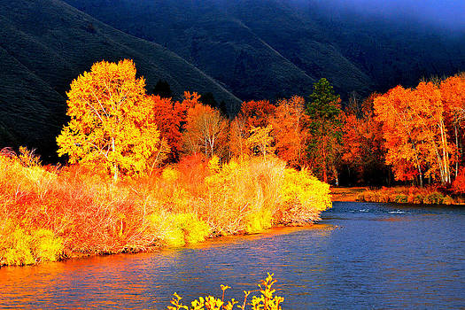Fall colors by Duane King