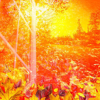 Jo Ann Snover - Fall colors in sunlight