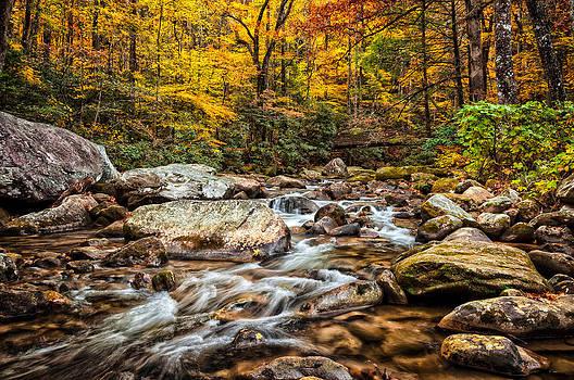 Fall Colors Jones Gap by Dustin Ahrens
