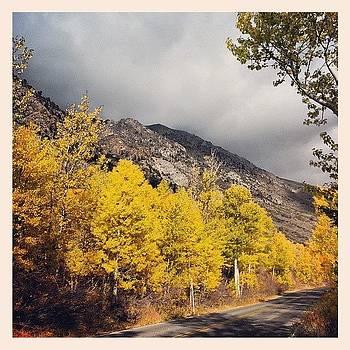 Fall Colors On The 158 #junelakeloop by HK Moore