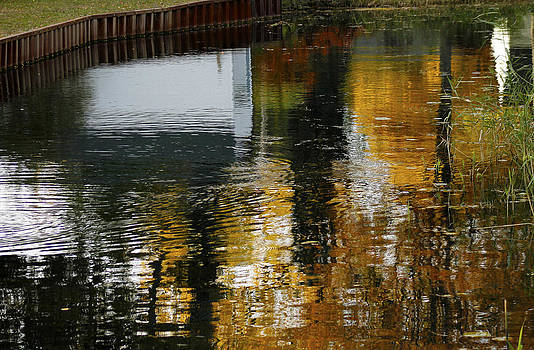 Fall Colors Reflecting On The Water by Danielle Allard