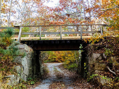 Fall Covered Bridge by Heather Sylvia
