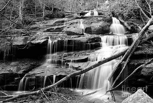 Fall Creek Falls - Level One by Adam Dowling
