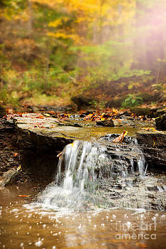 Fall Creek by Sharon Dominick