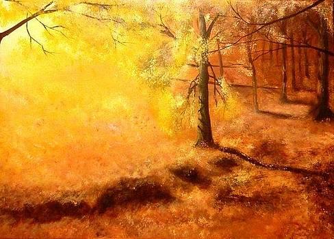 Fall by Danas Zymonas