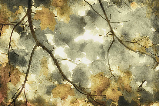 Fall Dance  by Mary Underwood
