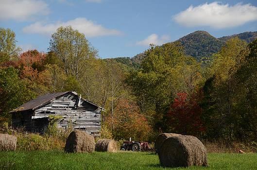 Fall Farm Scene by Cecile Brion