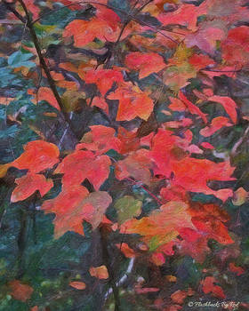 Fall Fire by Melody McBride