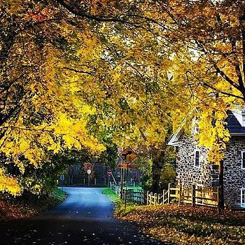 #fall Fleeting Beauty by Malcolm Van Atta III